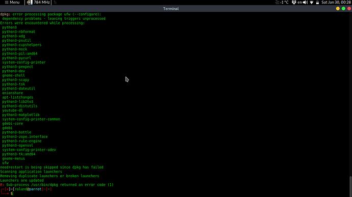 Screenshot at 2021-01-30 00-28-32