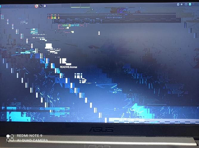Error_live Parrot_1