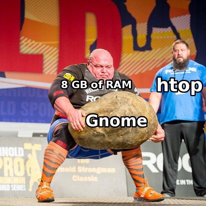 gnome-meme