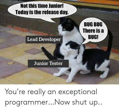 not-this-time-junior-today-is-the-release-day-bug-62010138